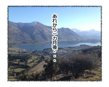 羊の国のラブラドール絵日記シニア!!「ゆうさんブート・キャンプ」4