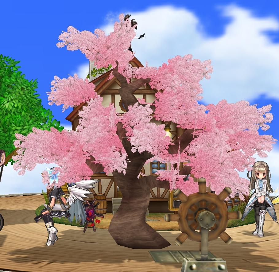 約束の桜の木