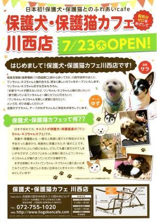 保護犬カフェチラシ表web