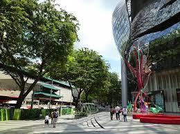 shiinaシンガポールオーチャードjpg