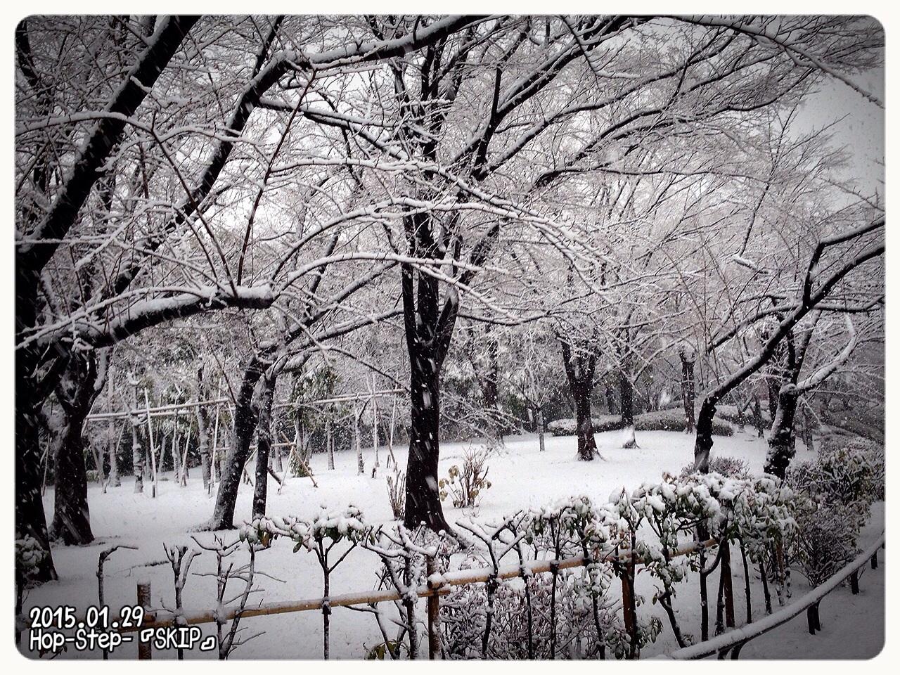 2『 あの雪の日 と 超レアものハーベスト だっぺ 』