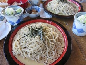 2014-11-22伊豆箱根 (233)