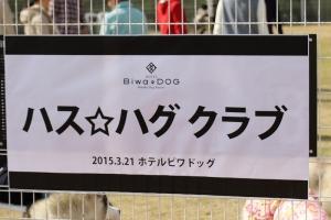 20150321びわワン (145)