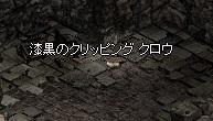 050_10.jpg
