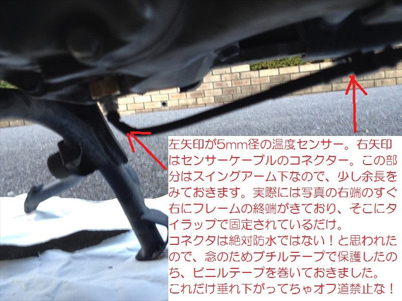 IMG_3599_R.jpg