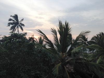 Lanka2014_06_07.jpg