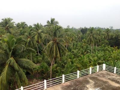 Lanka2014_08_08.jpg