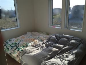 朝日の入る寝室