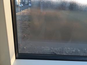 窓の外が結露