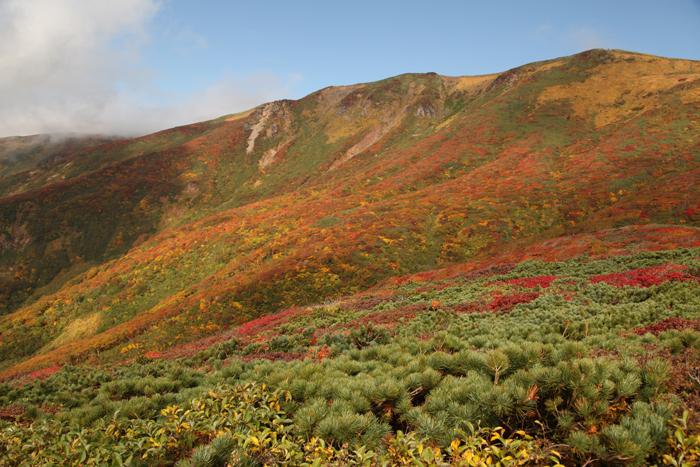 2014年の栗駒山の紅葉ピーク