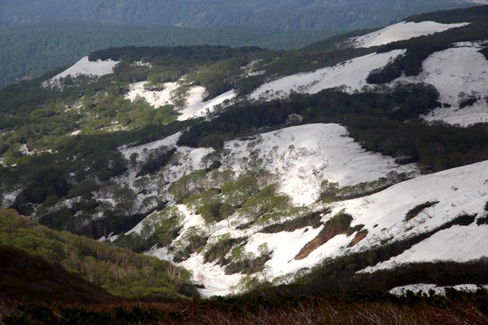 15年5月17日 残雪と新緑