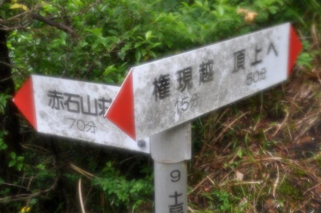 s-東赤石山ピクチャ 103_01