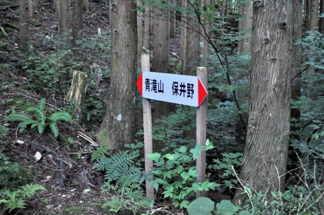 s-堂が森ピクチャ 002_01