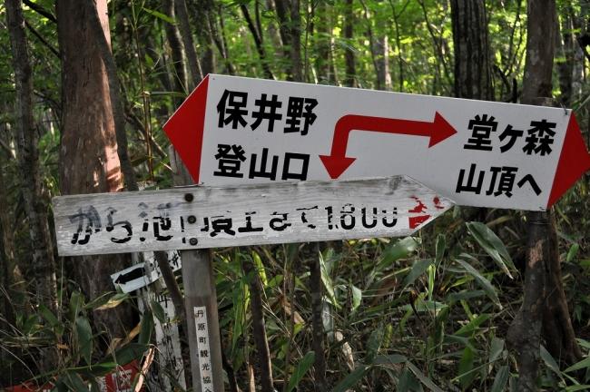 s-堂が森ピクチャ 006_01