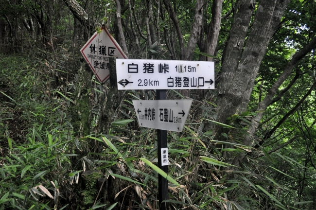 s-石墨山ピクチャ 022_01