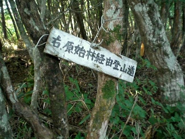 s-土佐矢筈山ピクチャ 023_01