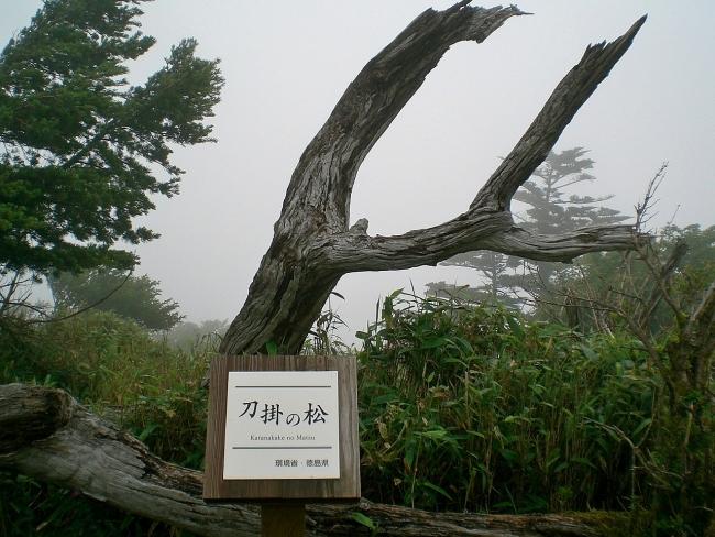 s-剣山ピクチャ 013_01