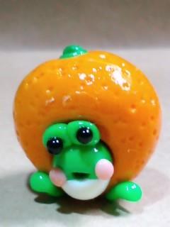 蜜柑ガエル
