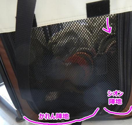 DSCN6676.jpg
