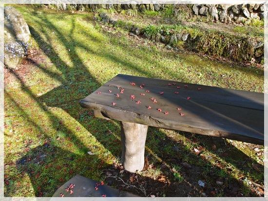 テーブルの上のハナノキ
