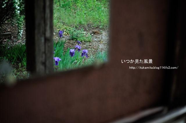 DS7_8587ri-s.jpg