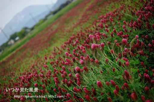 DS7_9018ri-ss.jpg
