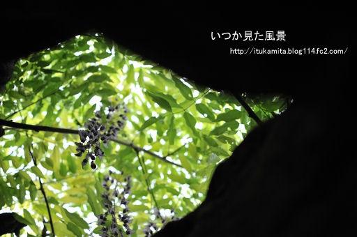 DS7_9029i-ss.jpg