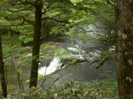 奥日光 湯川 4
