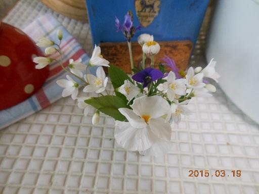19日小花