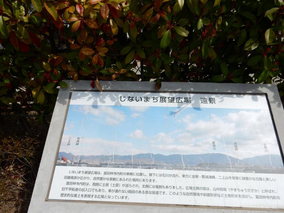 富田林岸和田 128