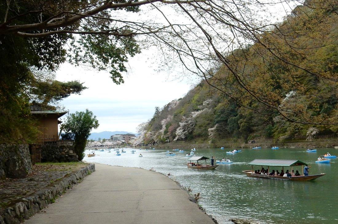 嵐山桜 059