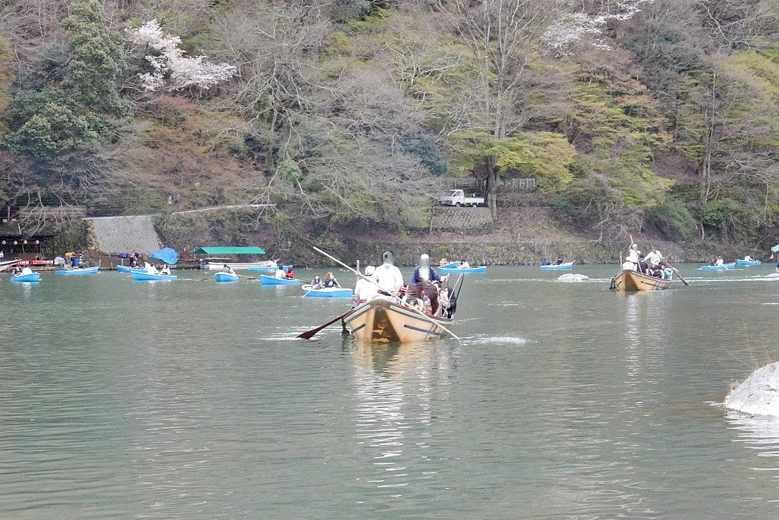 嵐山桜 071