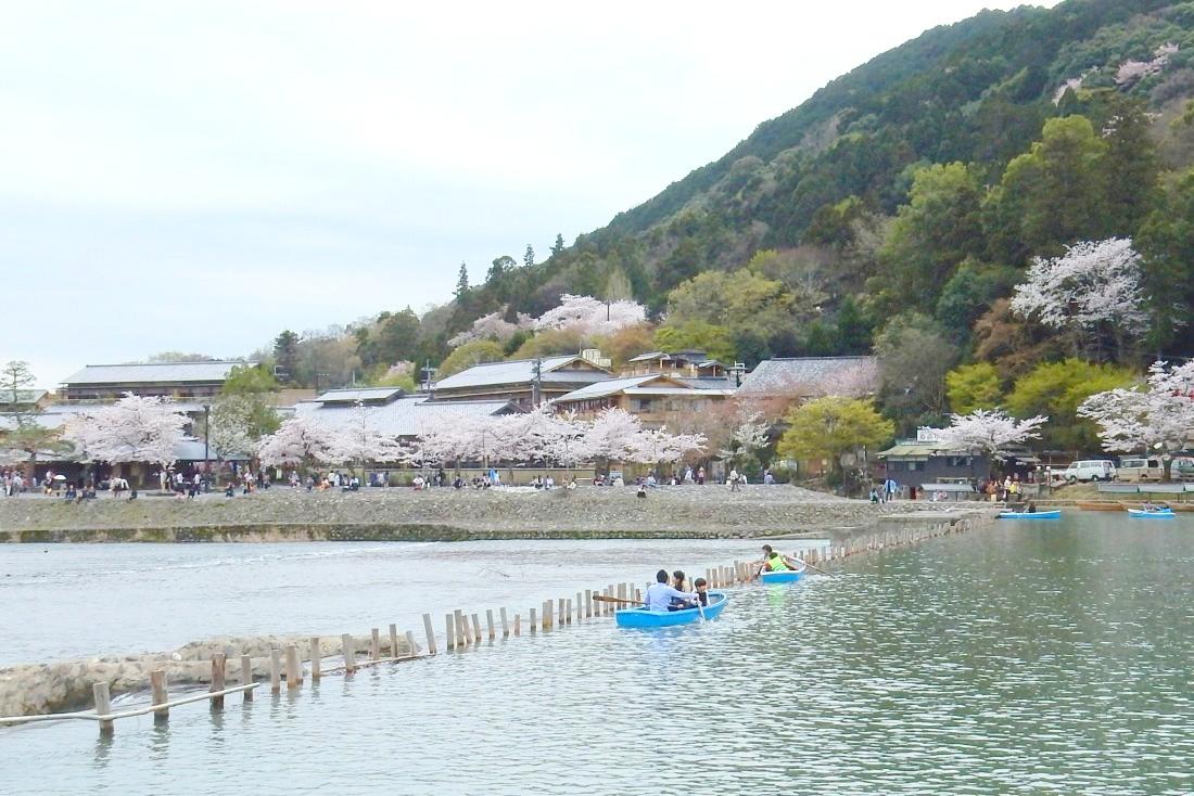嵐山桜 087