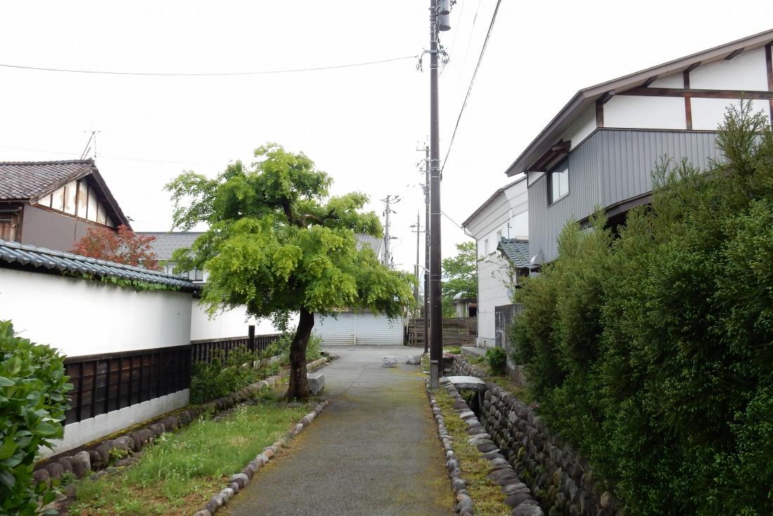 福井 297