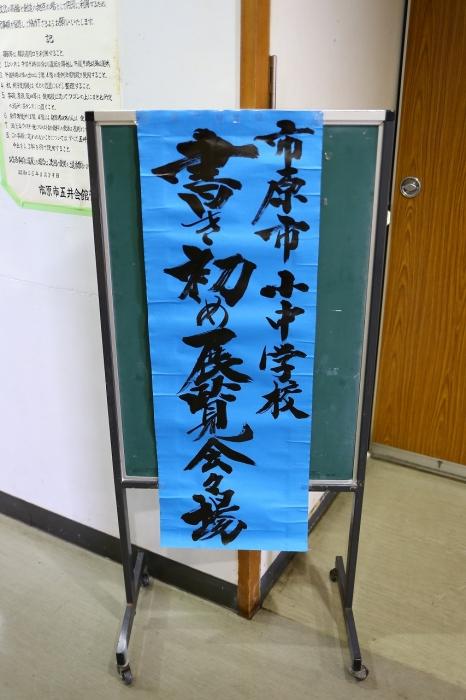 ananaburu (6)