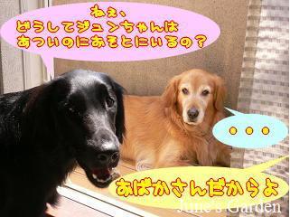 05-09-02_09a.jpg
