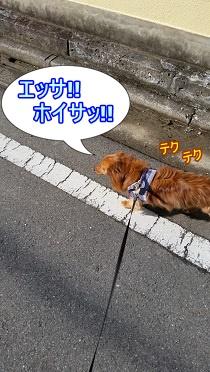 お散歩IN群馬