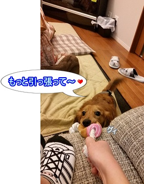 もっと~♪