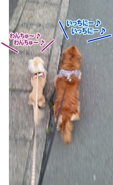 お散歩並列