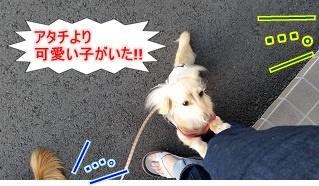 アタチより!!