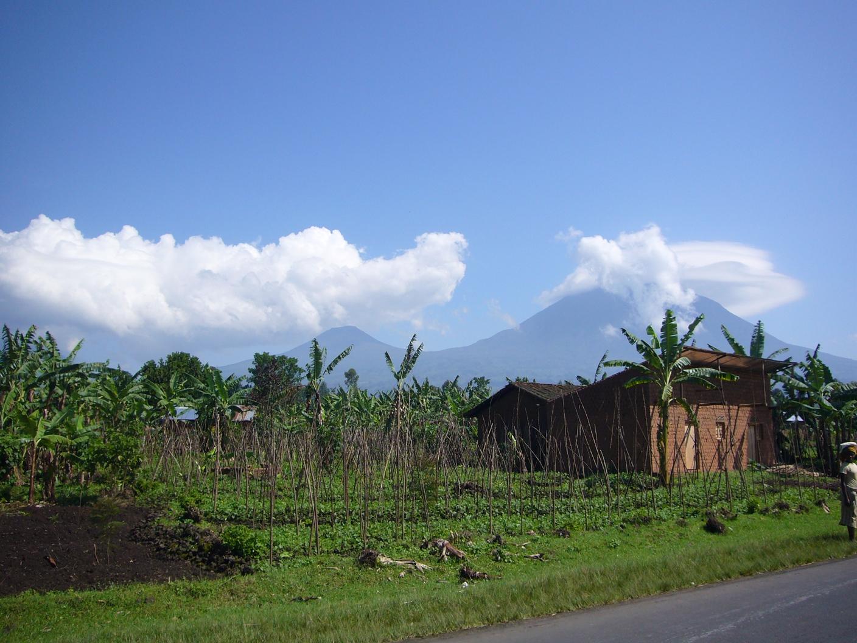 ルワンダ2