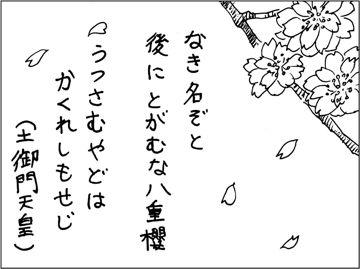 kfc00185-1