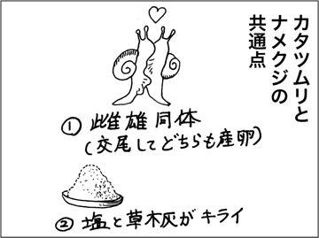 kfc00207-5