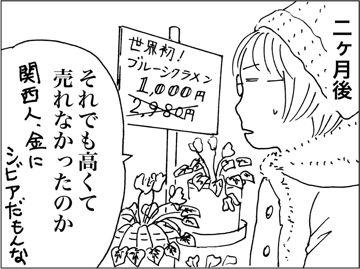 kfc00210-7