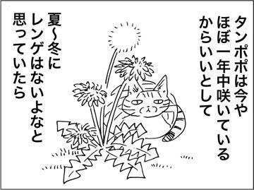 kfc00221-3