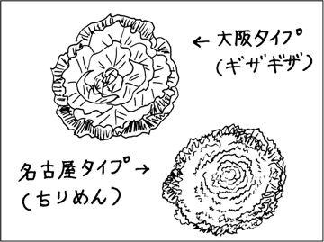 kfc00223-2