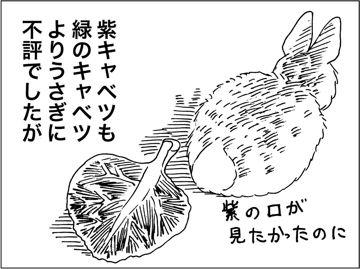 kfc00223-7