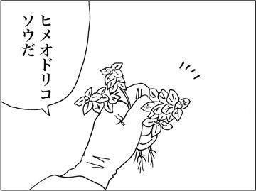 kfc00224-3