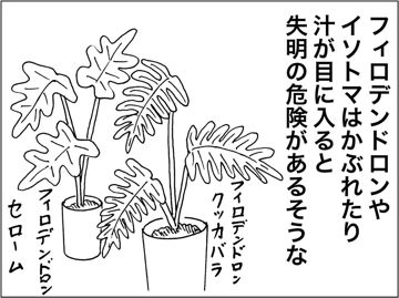 kfc00228-5