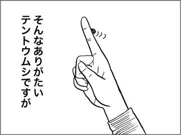 kfc00240-4